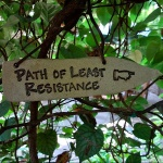 path-web
