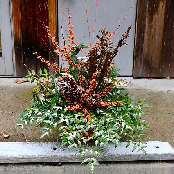 planter-web